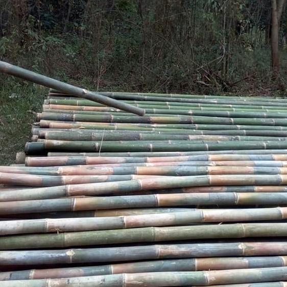 jual bambu di denpasar