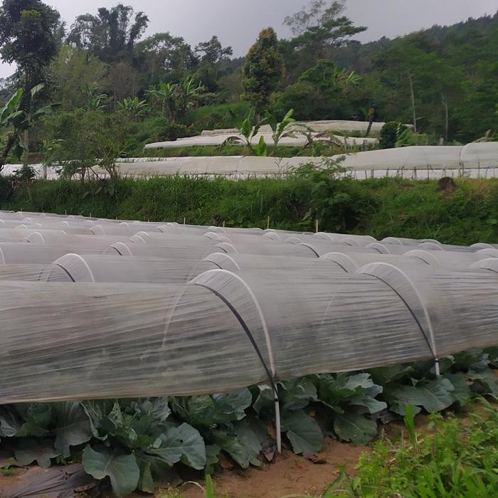 Jual Tanah di Bali