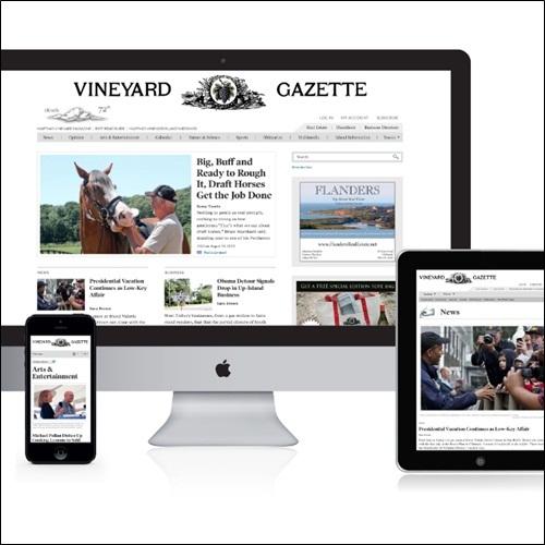 jasa pembuatan website di Bali